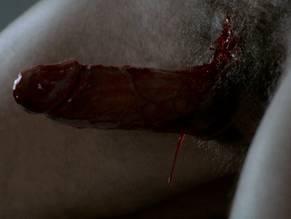 pornstar a male Anatomy of