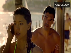 IAN ANTHONY DALE in HAWAII FIVE-0(2010)