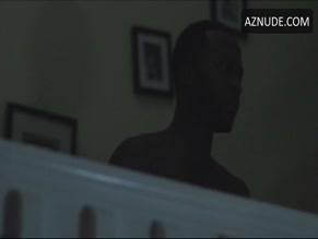 LADELE TOJUOLA in INTUITION(2015)