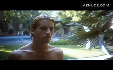 PETER SCHLESINGER in A Bigger Splash