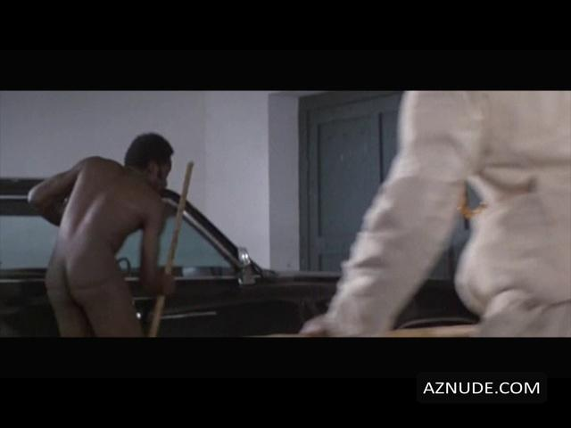 Richard Roundtree Nude - Aznude Men-3945