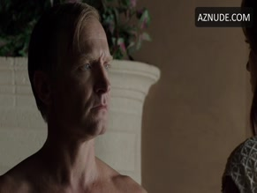 ULRICH THOMSEN in BANSHEE(2013)